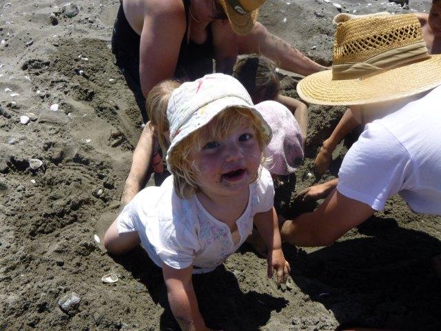 Bonnie on Otaki Beach