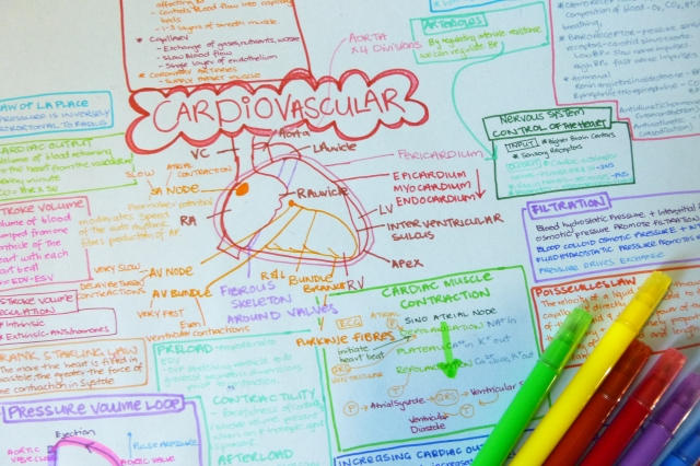 Mind Map | Madicattt